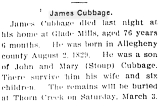 1906 james cubbage obit